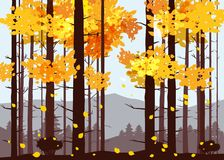 Forest, mountains, silhouettes of pine trees, firs, panorama, horizon, vector, illustration, isolated. Forest, mountains, silhouettes of pine trees, firs Stock Illustration