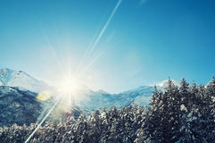 Forest and mountains at sunset with sunbeams Royalty Free Stock Images