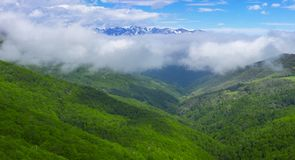 Forest and mountains from Viewpoint of Piedrasluengas in the Natural Park of Fuentes Carrionas Stock Images