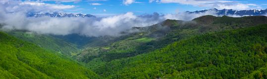 Forest and mountains from Viewpoint of Piedrasluengas in the Natural Park of Fuentes Carrionas Stock Photography