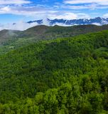 Forest and mountains from Viewpoint of Piedrasluengas in the Natural Park of Fuentes Carrionas Royalty Free Stock Photography