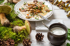 Forest mushroom soup and ingredients Royalty Free Stock Photos