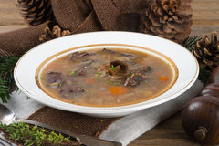 Forest mushroom soup Royalty Free Stock Photos