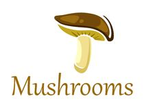 Forest mushroom on white Royalty Free Stock Image