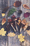 Forest mushrooms and autumn leaves on wooden table Royalty Free Stock Photos