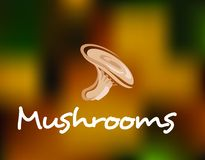 Forest mushrooms Stock Images