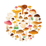 Forest Mushrooms Round Composition Photographie stock