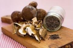 Forest mushrooms varieties Royalty Free Stock Photo
