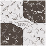Forest mushrooms vector seamless. Set. Seamless patterns with mushrooms and grass. Eps10 Royalty Free Stock Photo