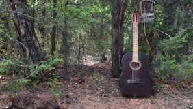 Forest music Stock Image