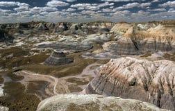 Forest National Park aterrorizado Fotos de archivo
