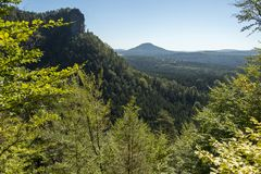 Forest National Park Bohemia Switserland