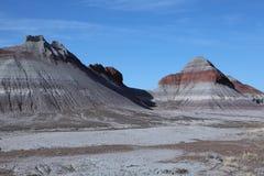 Forest National Park pétrifié Images libres de droits