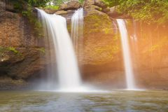 Forest natural waterfall on the rock stock image