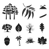 Forest and nature black icons in set collection for design. Forest life vector symbol stock web illustration. Forest and nature black icons in set collection Stock Image