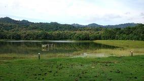 Forest. Nature green SaraburiProvice Thailand royalty free stock image