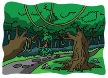 Forest and nature illustration Royalty Free Stock Image