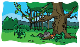 Forest and nature illustration Stock Photography