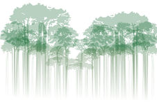 Forest on neutral background Royalty Free Stock Photos