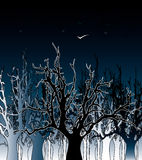 Forest and night-birds Royalty Free Stock Photo