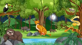 Forest at night scene with different wild animals. Illustration