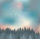 Forest and Night sky with stars vector background. Royalty Free Stock Image