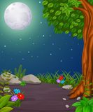 Forest at night and wood with fullmoon Royalty Free Stock Image