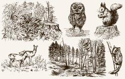 Free Forest Nook. Wild Animals. Stock Image - 103353031
