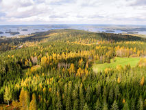 Forest of the Northern Finland. View to the surrounding forests and lakes from the Puijo tower Stock Photo