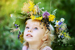 Forest nymph. Portrait of girl in a chaplet from the field colors royalty free stock image