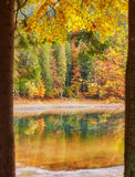 Forest Of Colorful Autumn Trees Reflecting In Lake Royalty Free Stock Photos