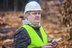 Forest Officer avec la tablette près des piles des rondins Photo stock