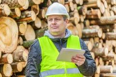 Forest Officer mit Tablet-PC nahe Stapel von meldet Wald an Stockbilder