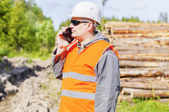 Forest officer talking on cell phone near lumber pile Royalty Free Stock Photos