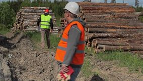 Forest officers with cell phone near to lumber pile stock footage