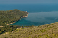 Forest and olive plantation attached to the sea. Forest and olive plantation in a relief aria attached to the sea. Sea merges with the sky. Photo was taken in a Stock Image