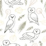 Forest owls and plants on white background. Forest owls. Vector seamless pattern with hand drawn plants and birds royalty free illustration