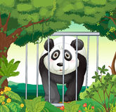 A forest with a panda inside a cage Stock Images