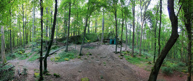 Forest panorama with loosely growing trees and a clearing. Forest panorama with a clearing, some rocks and a forest chapel in the background Royalty Free Stock Photos