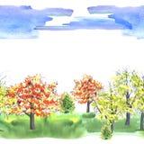 Forest Park φθινοπώρου Στοκ φωτογραφία με δικαίωμα ελεύθερης χρήσης