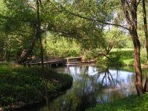 "17 Forest Park ""DROZDY ""στο Μινσκ Λευκορωσία στοκ εικόνες"