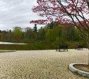 Forest Park Arkivfoto