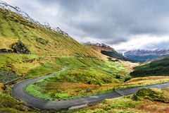 Forest Park Argyll, ορεινή περιοχή στη Σκωτία Στοκ φωτογραφία με δικαίωμα ελεύθερης χρήσης