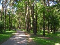 7 Forest Park ?DROZDY ?i Minsk Vitryssland arkivfoto