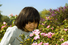 Forest Park Flowers. A cute Asian girl leans over to smell some flowers on a sunny day Royalty Free Stock Images