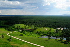 Forest Park in Inner Mongolia Stock Images