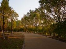 Forest Park olímpico Imagem de Stock Royalty Free