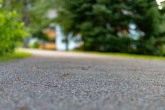 Forest Park Path Background noir photos libres de droits
