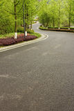 Forest park road Royalty Free Stock Photography