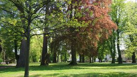 A forest park in a small town in France stock image